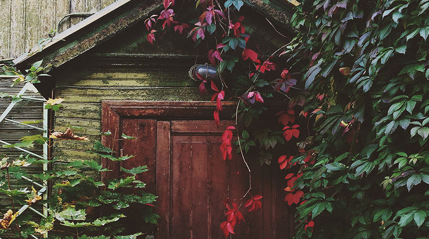 door - Design Tips to Renovate Your Gardens and Boost Ventilation at Home