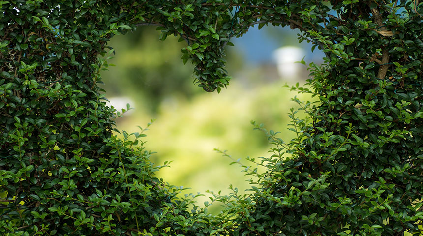 heart - Design Tips to Renovate Your Gardens and Boost Ventilation at Home